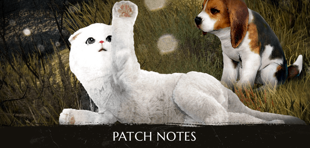 BDO – Patch Notes 31 10 2018 | 10 Million Players EVENT - All Patch